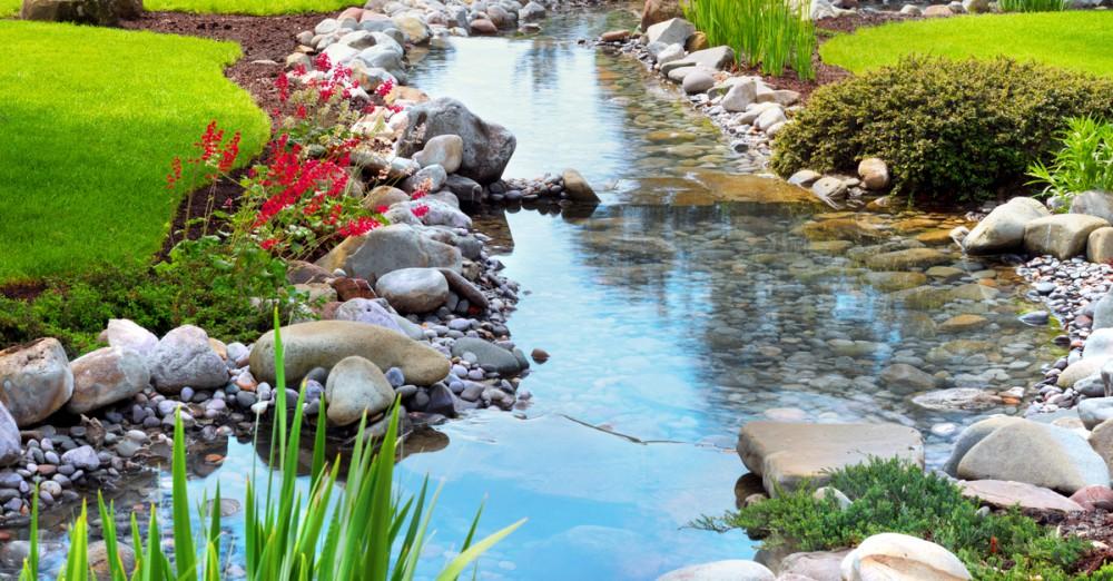 Pond Health Check