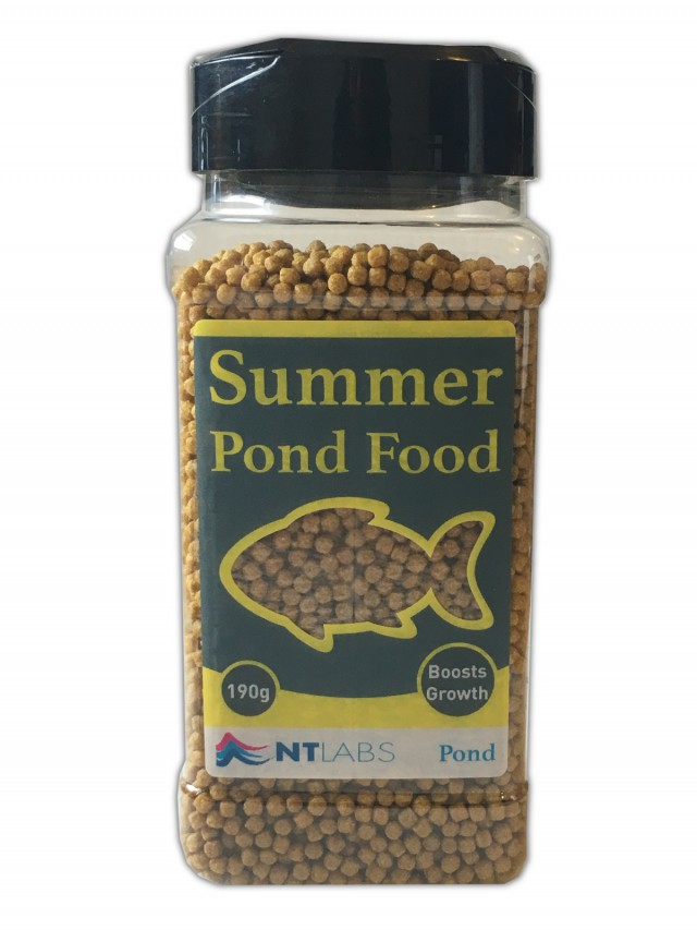 Summer Pond Food