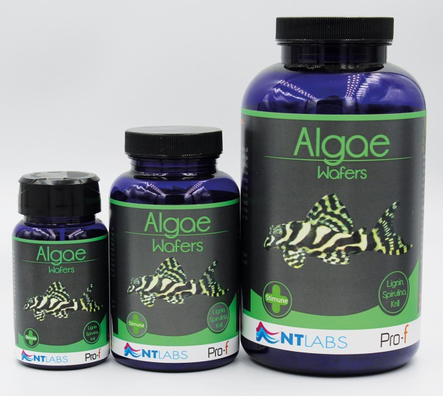 Algae wafers - all