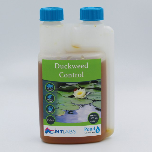 Duckweed 250ml