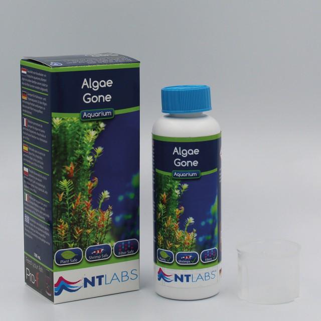 Algae gone