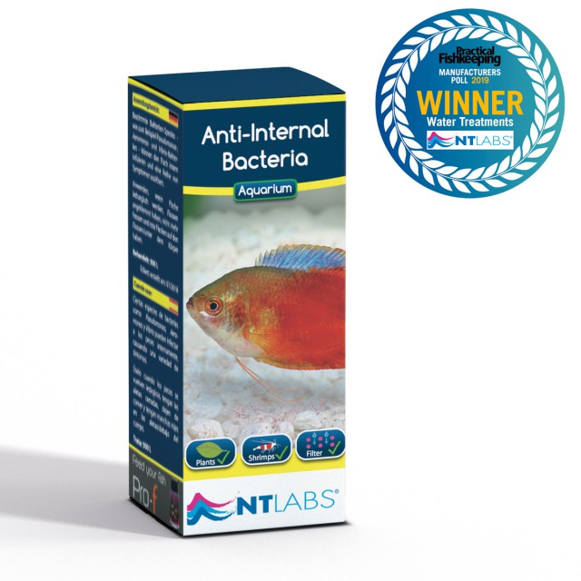 Anti internal award