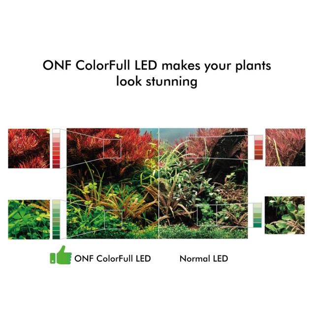 ONF Colorful LED